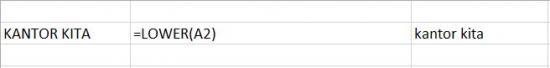Fungsi Lower Mengubah Huruf Kapital di Excel